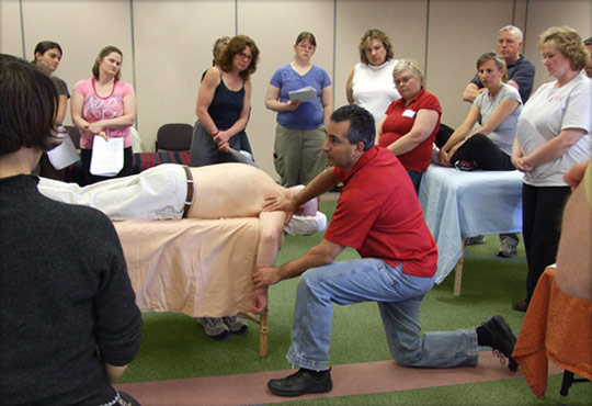 manual therapy course