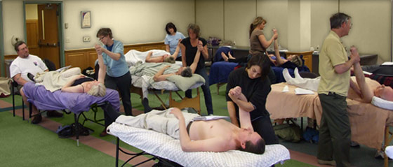 Massage Therapy list of majors to study in college